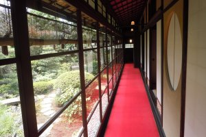 The beautiful Japanese garden from the corridor