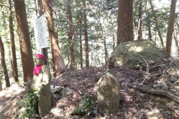 Not alone on Mt Asama