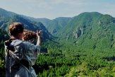 """เส้นทางเดินป่าคุมะโนะ """"ที่ไม่ค่อยมีใครรู้จัก"""""""