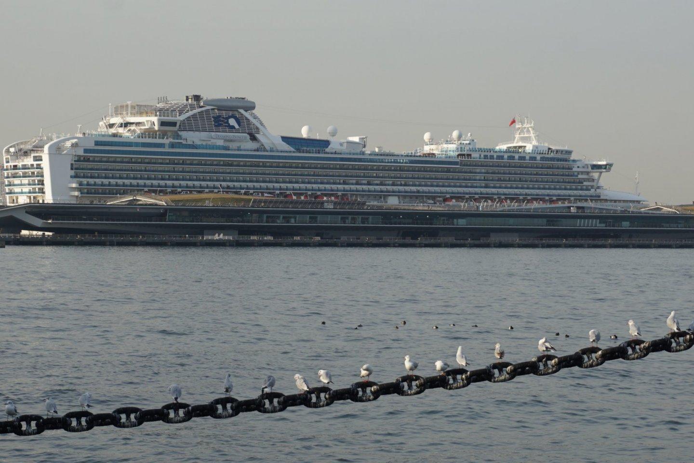 Diamond Princess alongside Osanbashi International Passenger Terminal
