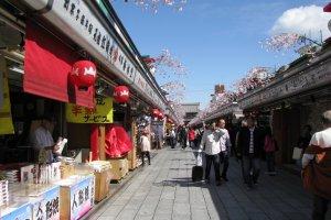 Весна на улице Накамисэ, Асакуса