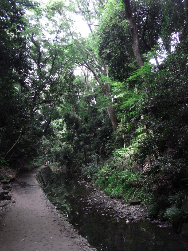 Todoroki Valley has lots of greenery