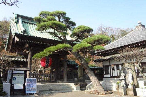 Beautiful Hase Temple in Kamakura.