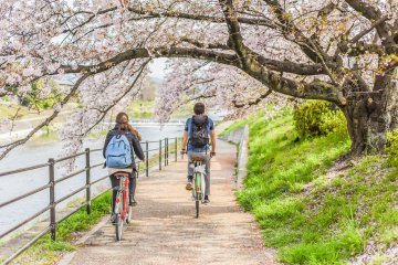 How to Rent a Bike in Japan