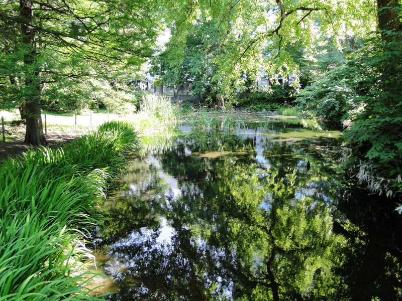 Enjoy a stroll through Sapporo's beautiful botanical garden