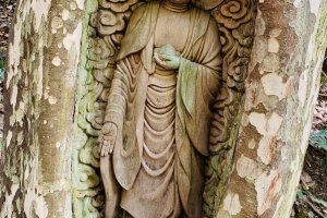 The living jizo (image of Buddha) on the Temple Trail, Kiriyama, Shikoku