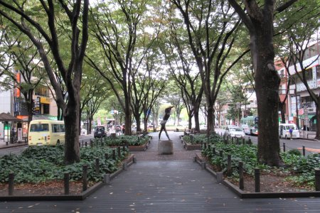 A Green Walk Through Sendai