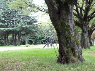 Old trees of Higashi Park