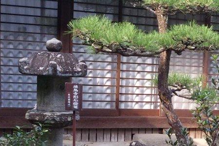 飞鸟寺——日本历史上首个文化盛世的象征