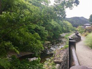 Idyllic riverside path
