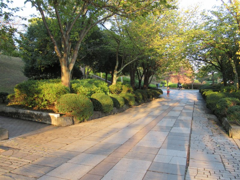 Wide paths of Tsutsujigaoka Park