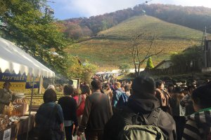Cocos Farm Wine Festival in Ashikaga