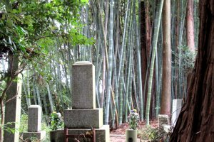 Cemeteries are often surrounded by forests