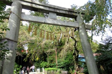 Another torii at the start of the way up