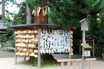 A common sight at a Shinto shrine