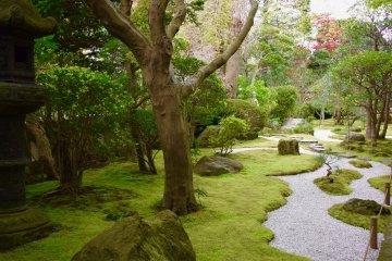 Один из многих садов, затерявшихся посреди великого множества храмов Камакуры