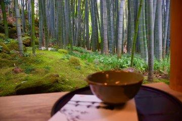 Маленькая бамбуковая роща на территории Хококудзи