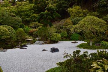 Традиционный японский сад из камней и деревьев