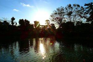 Sunset of Tsurugaoka Hachimangu Shrine