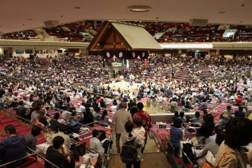 Wider view of the sumo arena