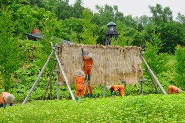 Prison Farmers