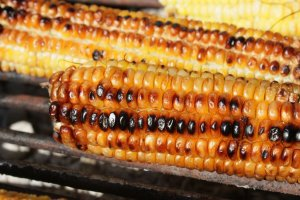 Grilled corn in summer is a pleasure