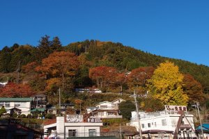 One of the many mountains and hills around Okutama Station