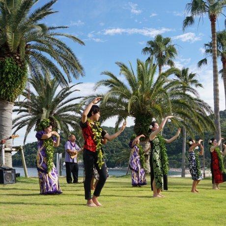 """Suo Oshima """"Japanese Hawaii"""" Sports Activity"""