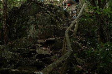 Steep path on Mt. Monju
