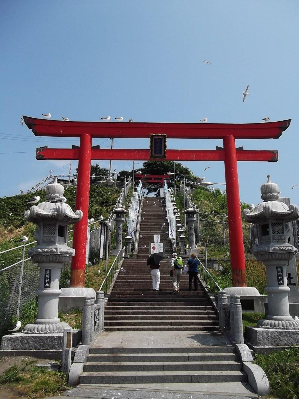 사원으로 올라가는 계단 밑의 문: 갈매기들이 주위를 맴돈다.