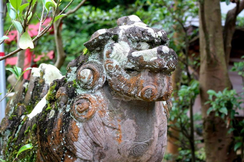 Battered komainu of Enoshima shrine
