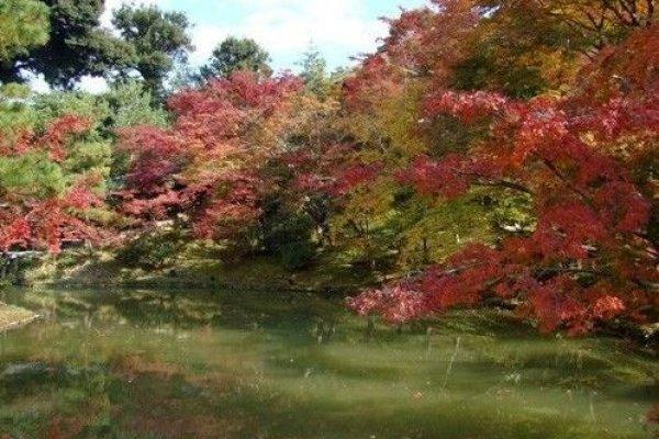 卧龙池美景