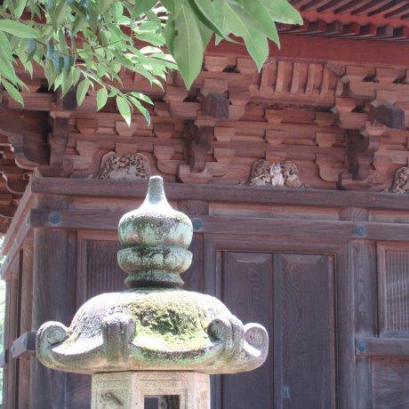 My Visit to Gotokuji Temple
