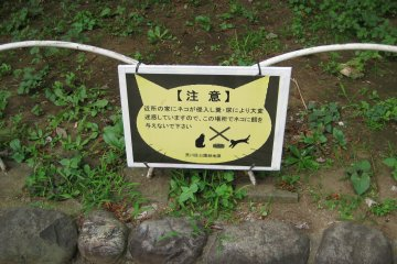 A sign advising against feeding the resident cats in Nishi-Nippori Park