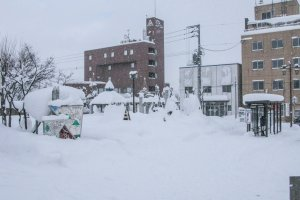 The Niseko Bus stop during the winter season. There are timetables for each bus displayed at the bus stop
