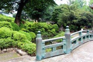 Greenery of Nezu Jinja