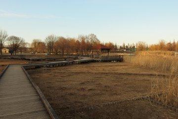 Toneri Park during winter