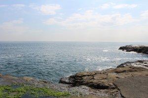 Летом в океане можно купаться!