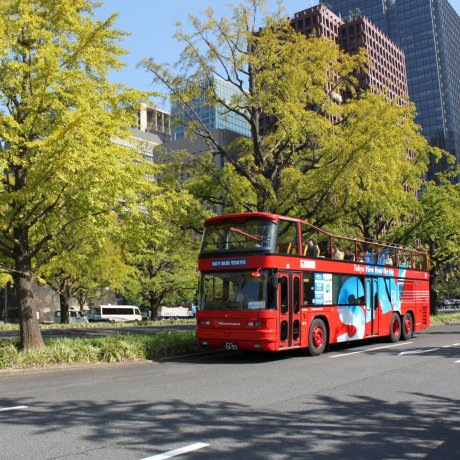 Sky Hop Bus Tokyo