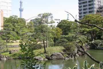 Японский традиционный сад в Рёгоку