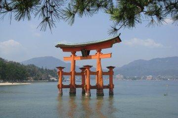 Знаменитые тории храма Ицукусима на Миядзиме