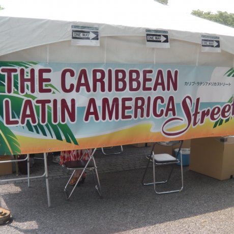 Caribbean & Latin American Festival