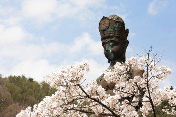 Large Kannon and sakura