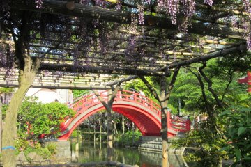 Kameido jinja - classical view with bridge and fuji