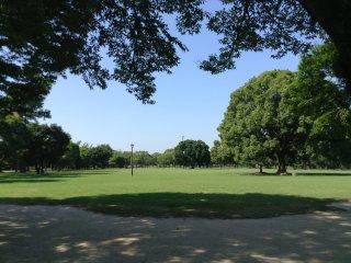Công viên dọc theo bãi đậu xe là bằng chứng chứng minh tại sao Kumamoto còn được gọi là Thành phố của cây xanh. Công viên bạn thấy ngày nay trước đây là một phần của các lớp tường thành bảo vệ của tòa thành