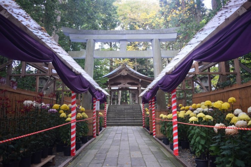 The shrine\'s grounds are naturally beautiful, and even more so with the flowers on display
