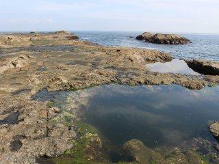 The rocky coast of Enoshima