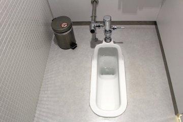 Туалет в японском стиле (встречается редко)