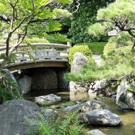 Khu vườn Nhật Bản ở công viên Ohori