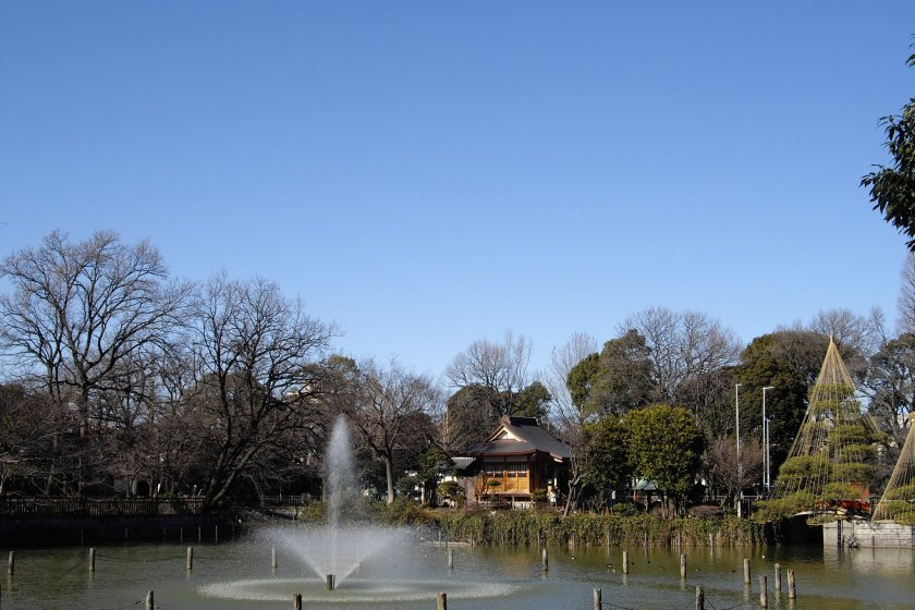 Himonya Park with its pond and views